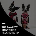 The Pawfect Mentoring Relationship
